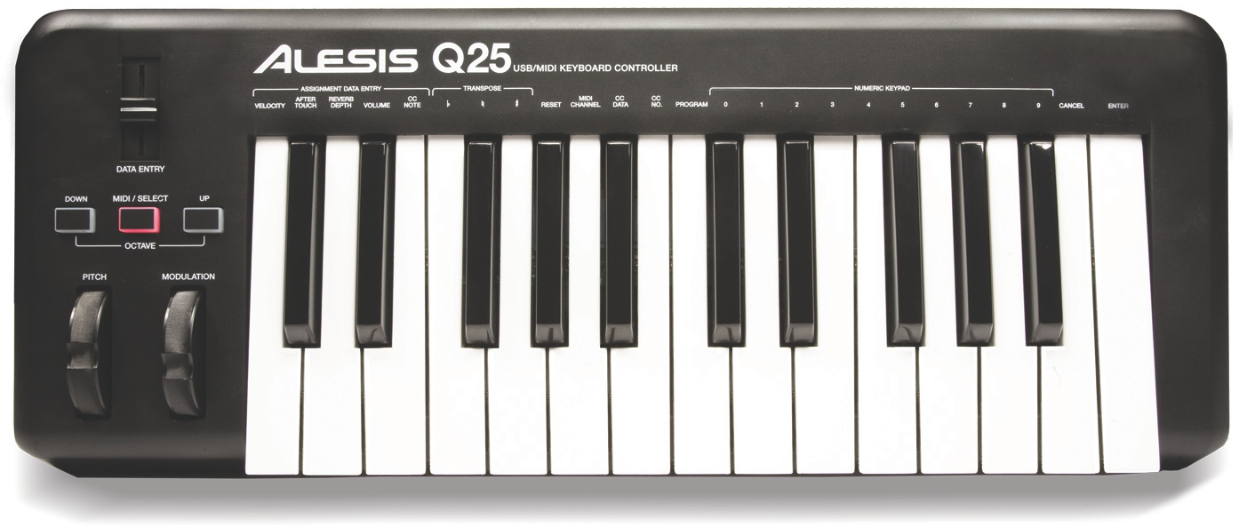 Alesis Q 25